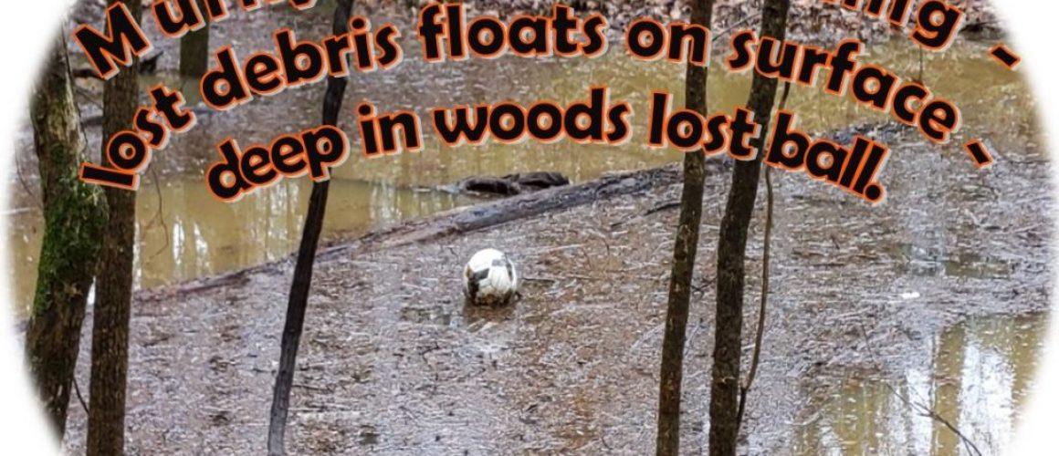 swelling-soccer-ball-haiku